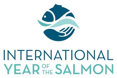 Wicklow Salmon – A Vanishing Species?